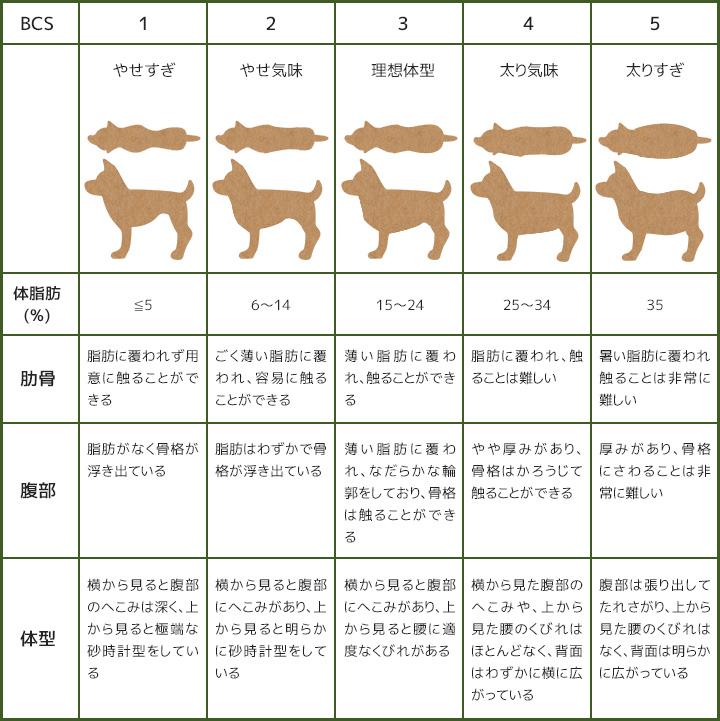 犬のボディコンディションスコアBCS