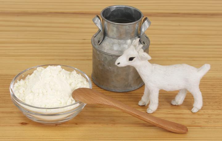 犬用ヤギミルク