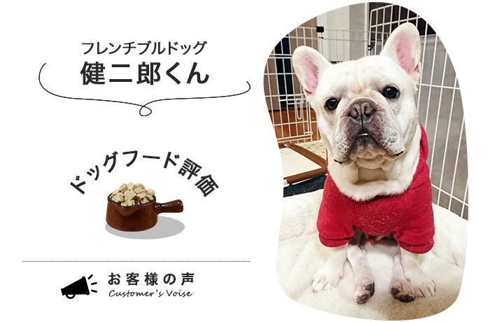 ドッグフードPERORIの口コミを紹介してくれたフレンチブルドッグの健二郎くん