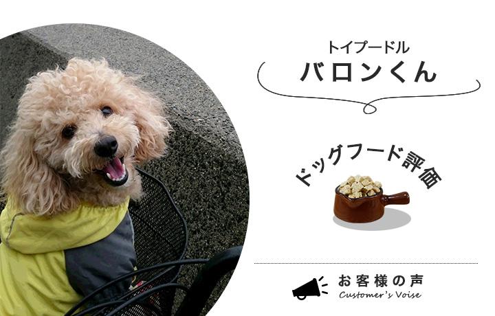 ドッグフードを食べているバロン君が笑顔でこっちを見ている様子